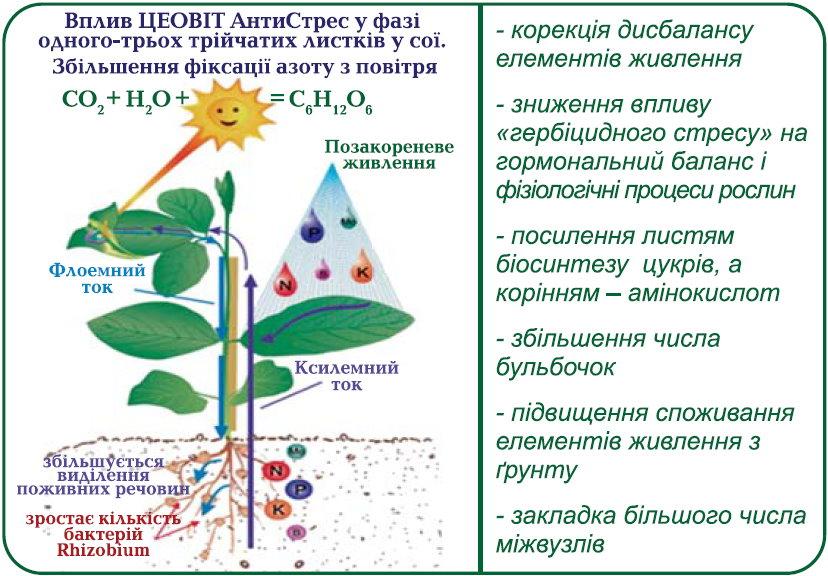 Увеличение освоения азота